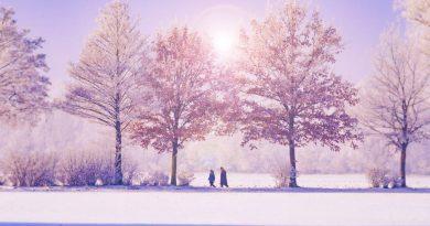 Snowmobile Vacations in Michigan's Upper Peninsula