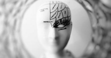 How Accelerated Learning Can Boost Your Brain Power and Change Your Life